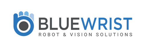 Bluewrist Logo